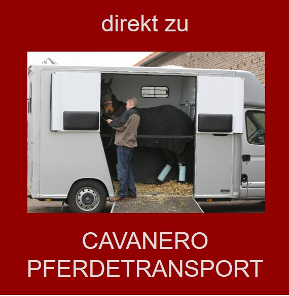 Pferdetransporte